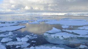 Cała naprzód! Cel: Antarktyda