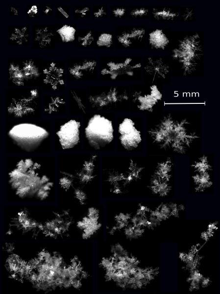 Płatki śniegu w 3D (University of Utah)